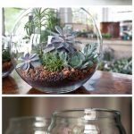 Simple but Effective Ideas For DIY Terrariums