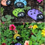 Great Examples For Stony Garden Lovers