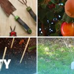 Marvelous Gardening Ideas Which Will Improve Your Skills