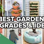 Incredible Gardening Ideas That Will Impress Your Neighbours